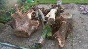 Verschenke Brennholz zum