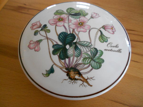 villeroy boch botanica deckeldose in pfinztal geschirr. Black Bedroom Furniture Sets. Home Design Ideas