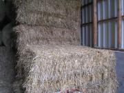 Weizenstroh in Quaderballen