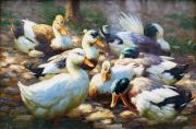Ankauf Gemälde - Ölbilder