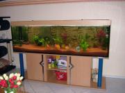 Aquarium 200 x