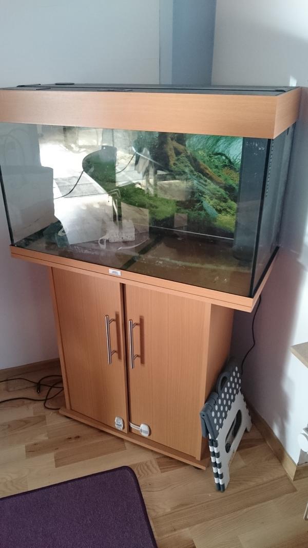 112l aquarium kleinanzeigen kaufen verkaufen bei deinetierwelt. Black Bedroom Furniture Sets. Home Design Ideas