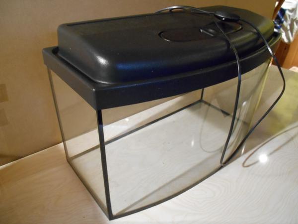 einst kleinanzeigen aquaristik kaufen verkaufen bei deinetierwelt. Black Bedroom Furniture Sets. Home Design Ideas