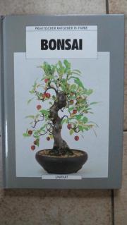 Bonsai praktischer Ratgeber in Farbe