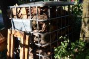 Brennholz: Esche, Obstbaum,