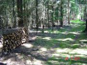 Brennholz - Feuerholz ab