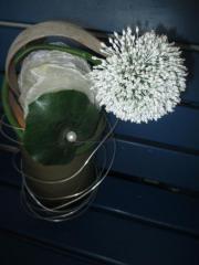 Dekorationsblumen für die Wohnung