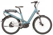 E-Bike Riese &