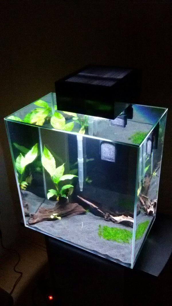 fluval edge neu und gebraucht kaufen bei. Black Bedroom Furniture Sets. Home Design Ideas