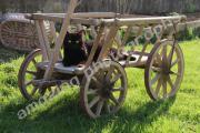 Fotografie-Print Katze auf Bollerwagen auf Leinwand