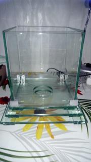 Glas-Deko und anderes Deko