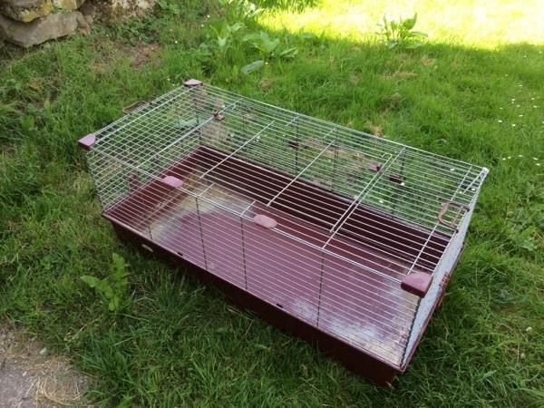 hasen meerschweinchen k fig gro in gundelsheim kleintiere kaufen und verkaufen ber private. Black Bedroom Furniture Sets. Home Design Ideas