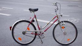 ich suche ein reparaturbed rftige damen fahrrad marke. Black Bedroom Furniture Sets. Home Design Ideas