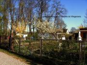 Kleingarten zu verkaufen
