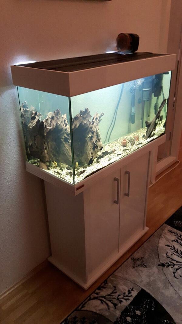 aquarium futterautomat kleinanzeigen tiermarkt deinetierwelt. Black Bedroom Furniture Sets. Home Design Ideas