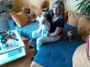 Liebevolle Tages- und Urlaubs- Hundebetreuung