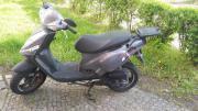 Motorroller Tapo TGB