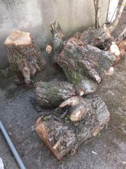 Naturholz/oberes Stammholz