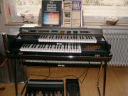 Orgel Orla Ruby,