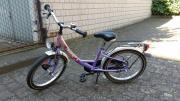 Pegasus Fun lila