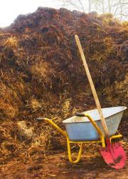 Pferdemist abzugeben, Biogas,