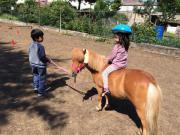 Ponytruppe für Kinder