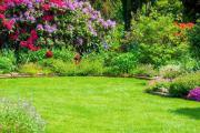 Schrebergarten, Garten gesucht