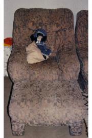 Sessel mit Hocker - Beste Qualität