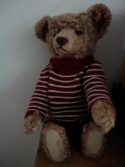 Steiff-Teddy limited edition 027873