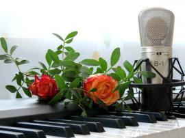 Nachhilfe, Sonstiger Unterricht - Stimmtraining - Einzelcoaching Stimme als Karrierefaktor
