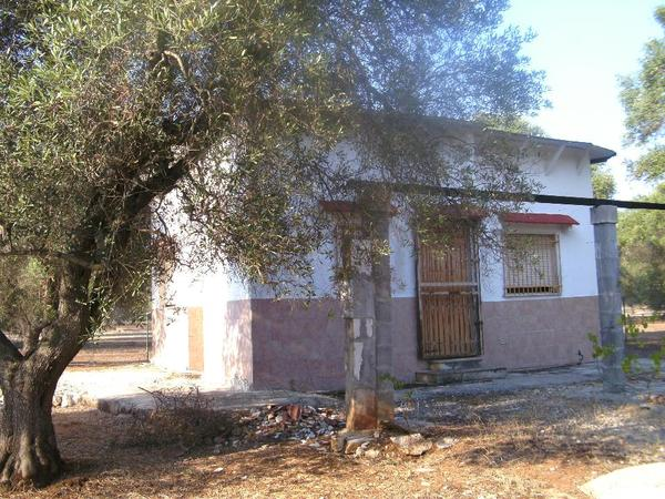 Süditalien Apulien San » Ferienhäuser, - wohnungen