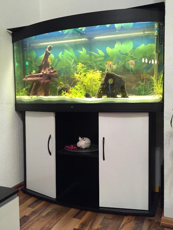 Panorama Aquarium Kaufen FY92 – Hitoiro