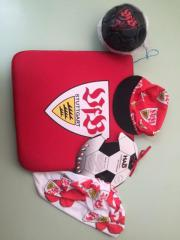 VfB Stuttgart Stadion-