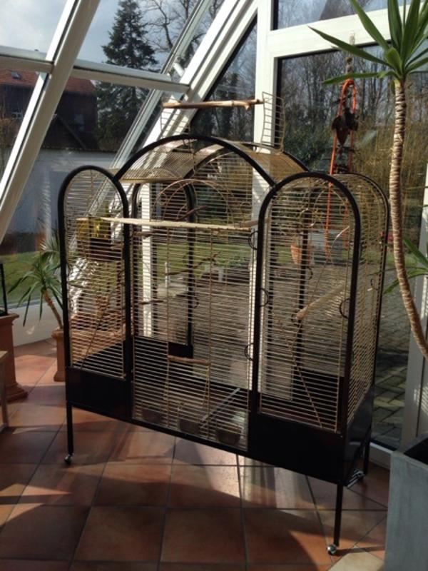 vogel voliere k fig gro in bad sassendorf v gel kaufen und verkaufen ber private kleinanzeigen. Black Bedroom Furniture Sets. Home Design Ideas