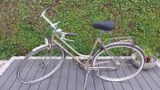 WELTKRONE Damen Fahrrad