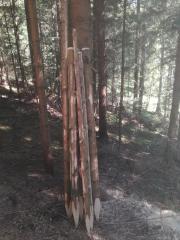 Zaunpfähle Holzpfähle