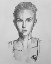 Zeichne Portraits,Tiere